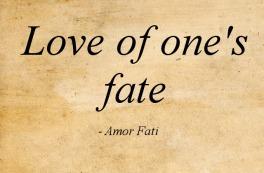 amor_fati
